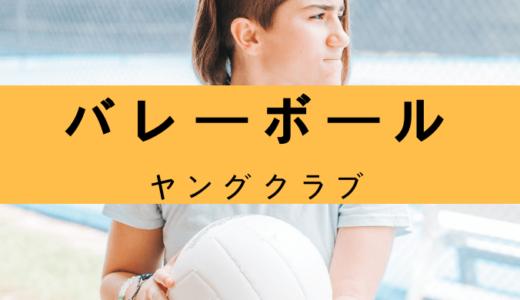 北海道のヤングバレーボールクラブについて