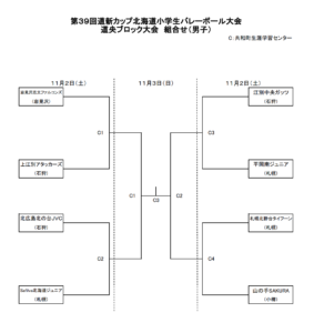 2019 道新道央組合せ男子